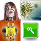 4 Images 1 Mot 8 Lettres Solutions 2021 Recherche Rapide