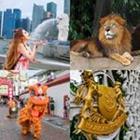 4 images 1 mot 4 lettres niveau lion 1