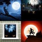 4 images 1 mot 4 lettres niveau nuit 1