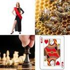 4 images 1 mot 5 lettres niveau reine