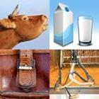 4 images 1 mot 5 lettres niveau vache 1