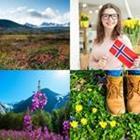 4 images 1 mot 6 lettres niveau fleurs