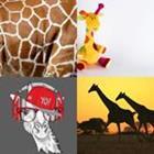 4 images 1 mot 6 lettres niveau girafe 2