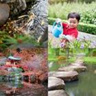 4 images 1 mot 6 lettres niveau jardin 1