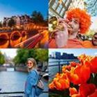 4 images 1 mot 6 lettres niveau orange 2