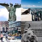 4 images 1 mot 6 lettres niveau pigeon 1