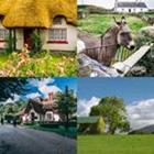 4 images 1 mot 7 lettres niveau cottage