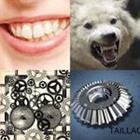 4 images 1 mot 7 lettres niveau denture 1