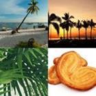 4 images 1 mot 7 lettres niveau palmier 1