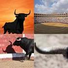 4 images 1 mot 7 lettres niveau taureau 1