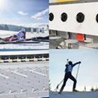 4 images 1 mot 8 lettres niveau biathlon