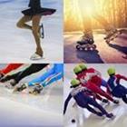 4 images 1 mot 8 lettres niveau patinage